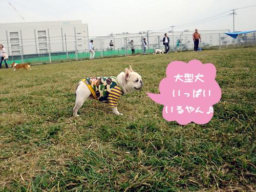 パオちゃんもテンションあ~っぷ!!
