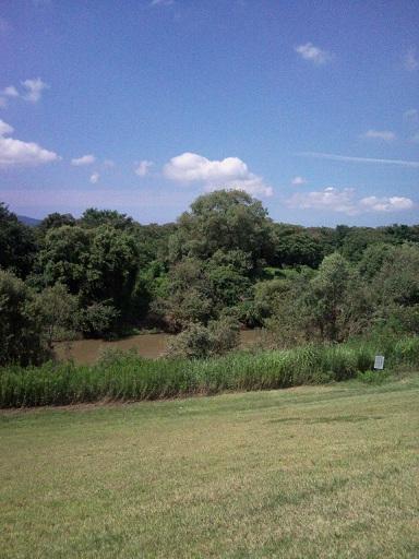 水道公園3