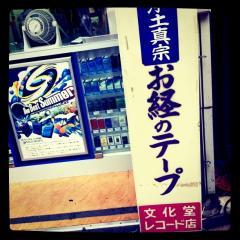 kumamoto4.jpeg