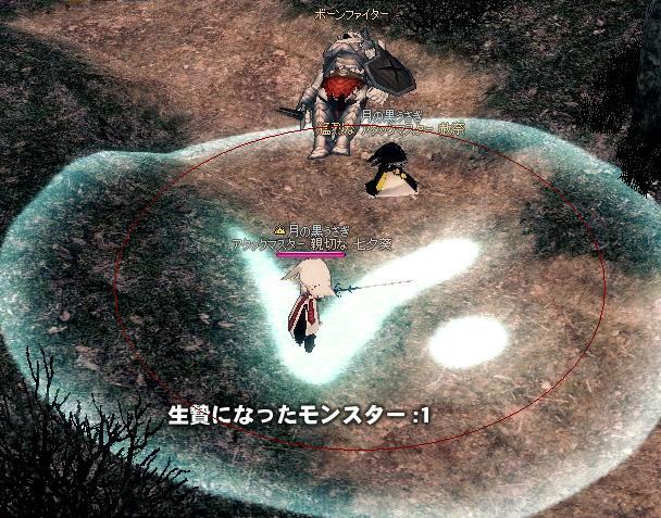 mabinogi_2009_12_14_005.jpg