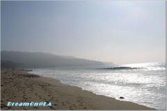 CA_Redondo W