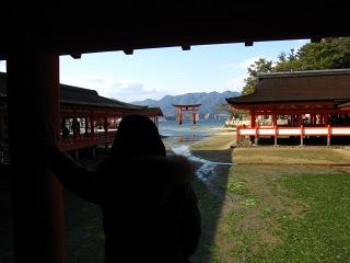 20100109_宮島11