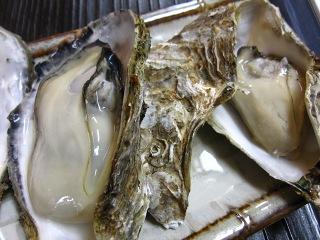 20100109_宮島16