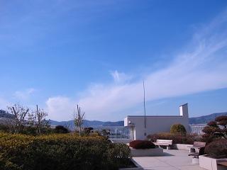 20100118_青空1