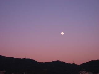 20100129_夕空と月