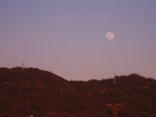 20100129_夕空と月2