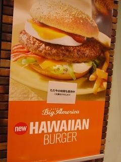 20100219_マック-HAWAIIAN1
