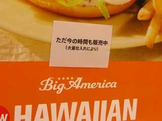 20100219_マック-HAWAIIAN2