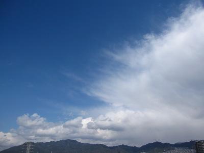 20100326_曇りのち晴れ