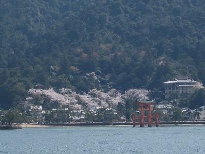 20100405_宮島30