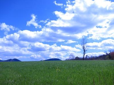 20100424_砂谷牧場