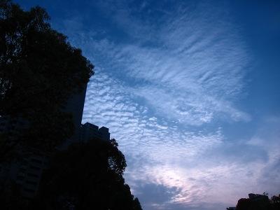 20100505_空