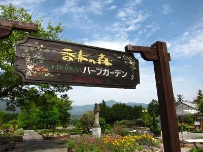 20100509_香木の森1