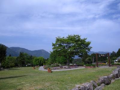 20100509_香木の森17