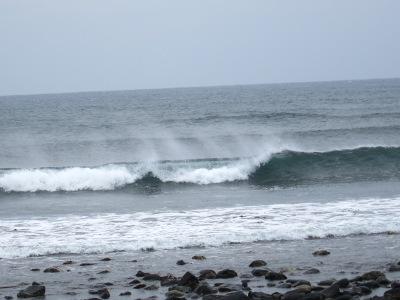 20100528_角島20