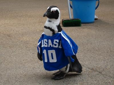 20100623_松江FPペンギン_10