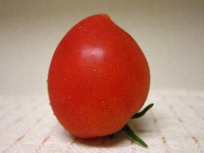 20100706_トマト食べた