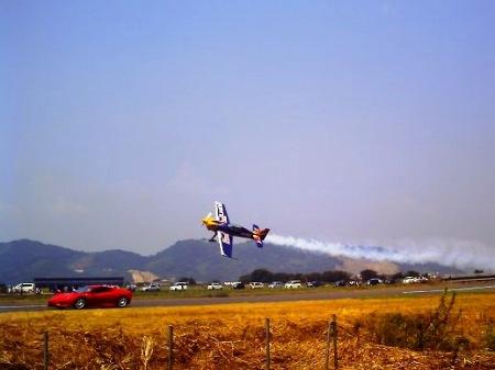 20100822_ひまわりカーニバル12-v