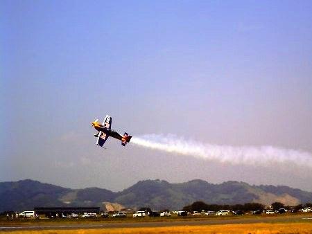 20100822_ひまわりカーニバル16-v