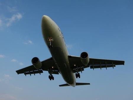 20100801_飛行機の下3