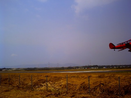 20100822_ひまわりカーニバル4-v
