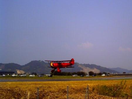 20100822_ひまわりカーニバル6-v