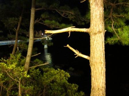 20101003_温泉8(展望台見える)