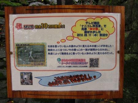 20101003_ナニコレ看板2