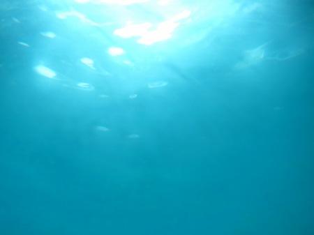 20101005_海中1
