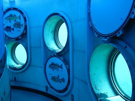 20101005_展望塔窓