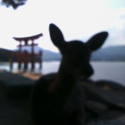 20101017_宮島シルエット-RF