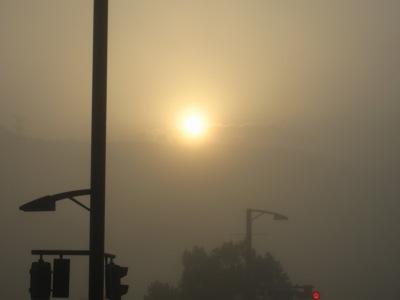 20101112_霧の中