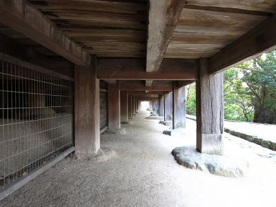 20101017_宮島24