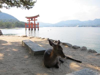 20101017_宮島8