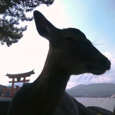 20101017_宮島9-RF