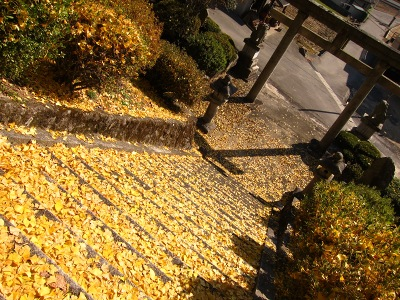20101121_客人神社13