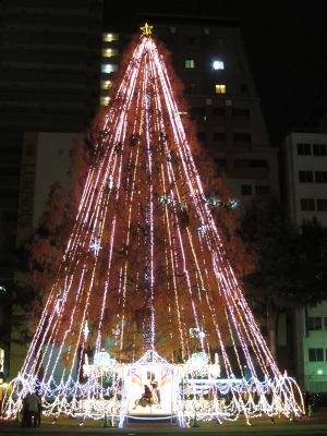 20101206_きらきら7