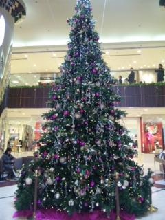 2011 クリスマス 1