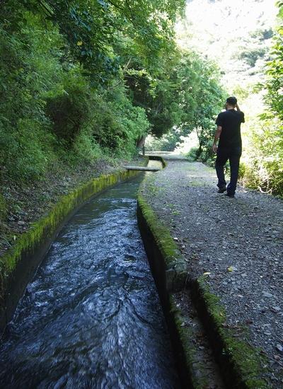 250818 雄亀滝橋3