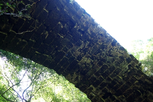 250818 雄亀滝橋12