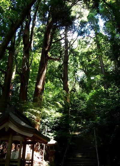 250818 くしふる神社4