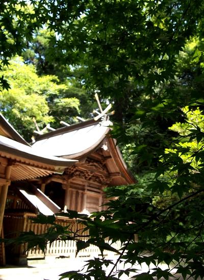250818 くしふる神社28