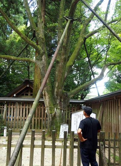 250818 天岩戸神社6