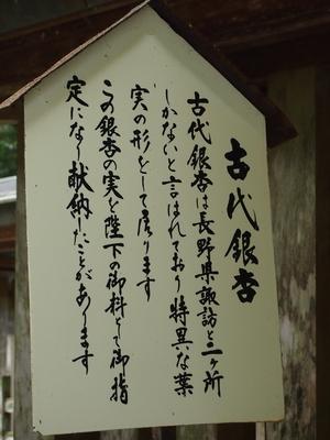 250818 天岩戸神社10