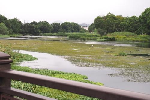 260903 江津湖3
