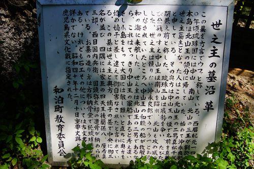 250831 世之主の墓8