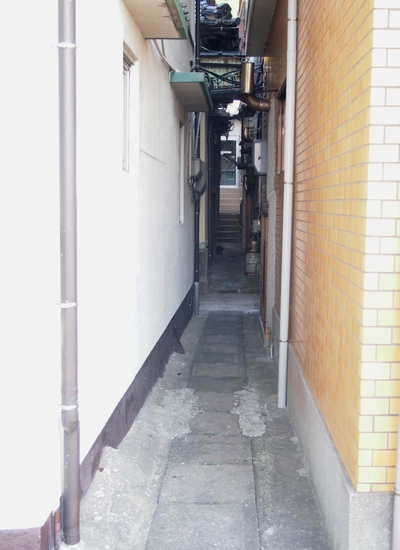 250922 保戸島8