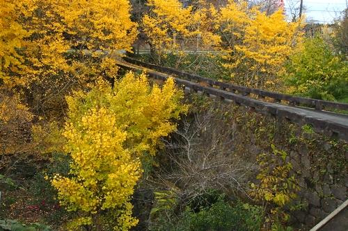251129 小筵橋1