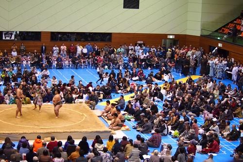 251205 大相撲巡業8