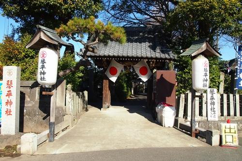 260110 琴平神社5